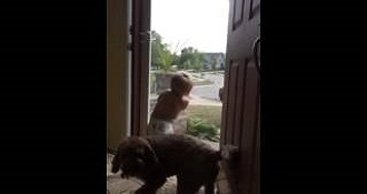 Baby And Dog Adorably Freak Out When Dad Comes Home