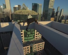 Don't Watch This If You Are Afraid Of Heights!
